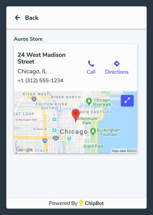 ChipBot Maps